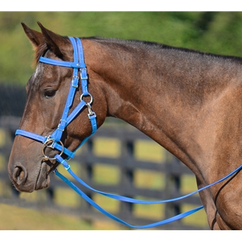 LIGHT BLUE Quick Change HALTER BRIDLE with Snap on Browband made from BETA BIOTHANE