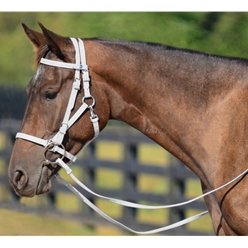 WHITE Quick Change HALTER BRIDLE with Snap on Browband made from BETA BIOTHANE