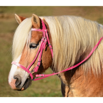 PINK ENGLISH HUNT BRIDLE Made from Beta Biothane