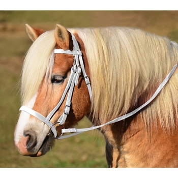 WHITE ENGLISH HUNT BRIDLE Made from Beta Biothane