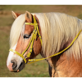 YELLOW ENGLISH HUNT BRIDLE Made from Beta Biothane