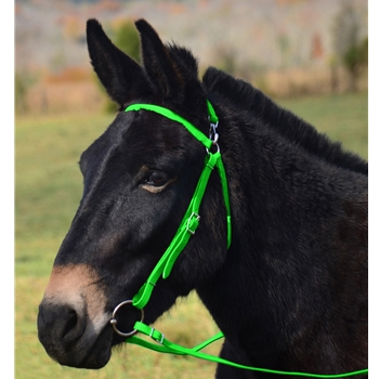 LIME GREEN MULE BRIDLE made from BETA BIOTHANE