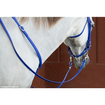 RIDING REINS (Solid Colored) made from BETA BIOTHANE