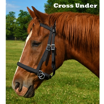 Horse  2 in 1 BITLESS BRIDLES