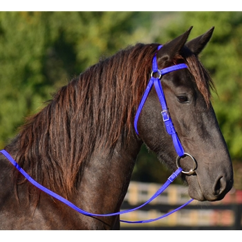 WARMBLOOD/THOROUGHBRED  Aussie/Barcoo BRIDLES
