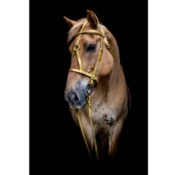 DRAFT HORSE SIZE War or Medieval Bridle made from BETA BIOTHANE