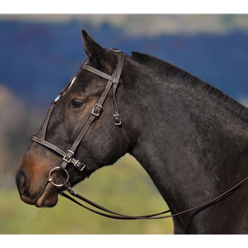 HORSE SIZE War or Medieval Bridle made from BETA BIOTHANE