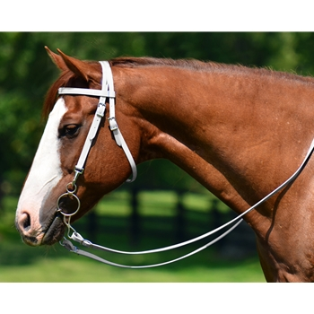 HORSE SIZE Western Bridle with Full Browband made from BETA BIOTHANE